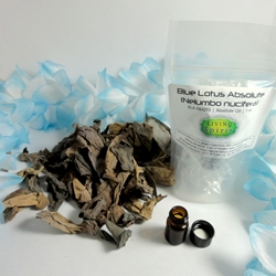 Absolute Oil - Blue Lotus (Nelumbo nucifera)