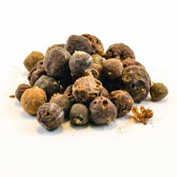 Juniper Berry Berries (Juniperus communis)